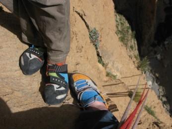 Taghia11-scarpa docet