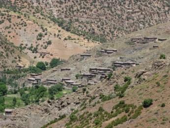 Taghia26